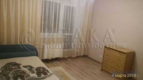 Аренда квартиры, Кудрово, Всеволожский район, Строителей пр-кт - Фото 1