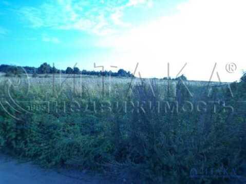Продажа участка, Веребково, Печорский район - Фото 2