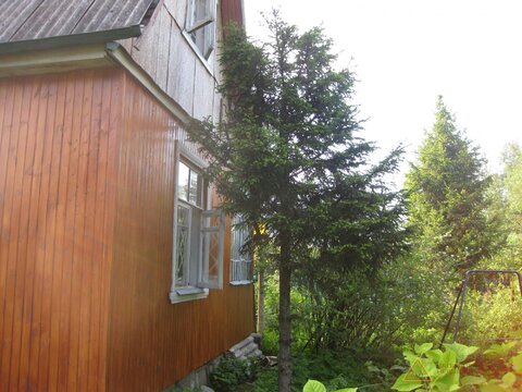 Сдам дом в Радищево на летний период - Фото 1