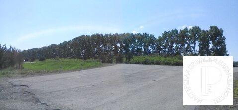 Участок площадью 4,3 гектара первая линия федеральной трассы Р-255 - Фото 5