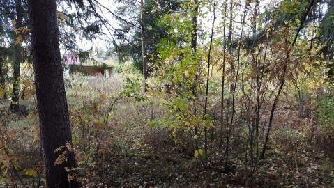 Участок 14, 8 соток, в деревне Брехово ( г. Голицыно ) - Фото 2