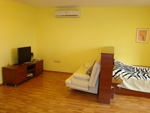 Стильная квартира-студия 62 кв.м. ищет нового нанимателя - Фото 4