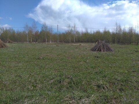 Земельный участок 15 соток в д.Новинки, Дмитровского района