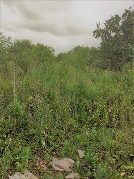 Продам дом рядом с р. Ока 25 км от г. Рязани - Фото 4