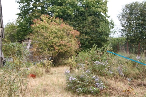 Предложение чудесное, участок для постройки дачи, лес и река Протва. - Фото 4