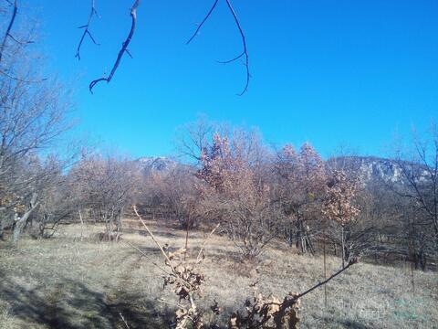 Продается участок 1,22 га в селе Соколиное Бахчисарайского р-на, Крым. - Фото 5
