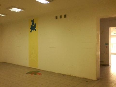 Сдам помещения свободного назначения 284 кв.м. - Фото 1