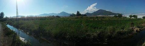 Земельный участок в Турции, Алания. Сельское хозяйство, Готовый бизнес Аланья, Турция, ID объекта - 100031376 - Фото 1