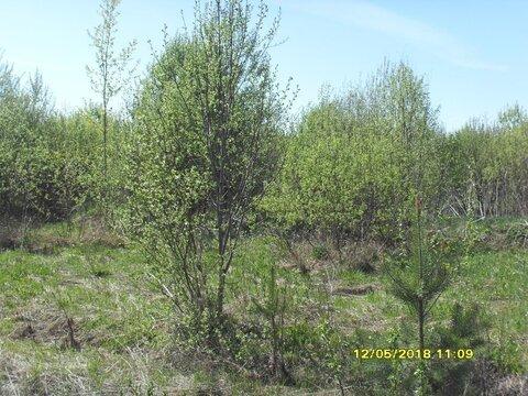 Участок 14,87 соток в коттеджном поселке «Эра» вблизи гор. Калязина - Фото 3