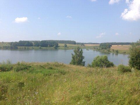 Продаю земельный участок ИЖС в Алексинском районе - Фото 2