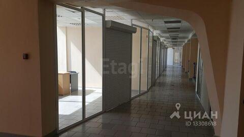 Аренда торгового помещения, Омск, Ул. Конева - Фото 2