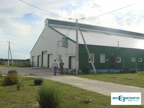 Продажа производственного помещения, Бондарский район, СПК - Фото 2