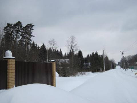 Лесной участок 20 сот. с газом и идеальным подъездом. - Фото 5