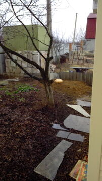 Дача, Таврово-5 - Фото 2