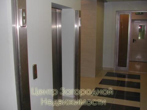 Аренда офиса в Москве, Белорусская, 60 кв.м, класс B. м. . - Фото 3