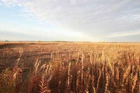 Земельный участок в южном - Фото 3