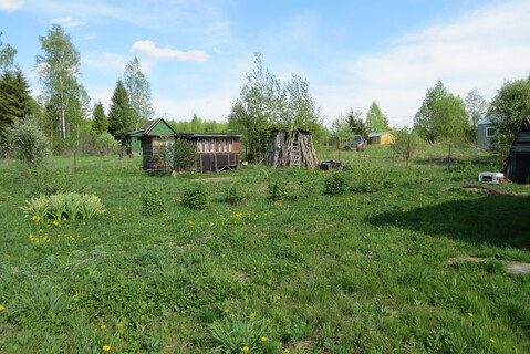 Дача у Леса, СНТ Кварц - Фото 5