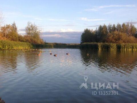 Продажа торгового помещения, Костромской район - Фото 1