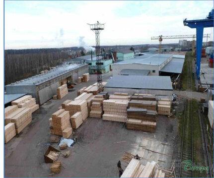 Производственное предприятие по деревообработке. - Фото 1