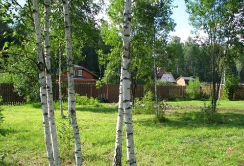 Красивый дом в окружении леса - Фото 5