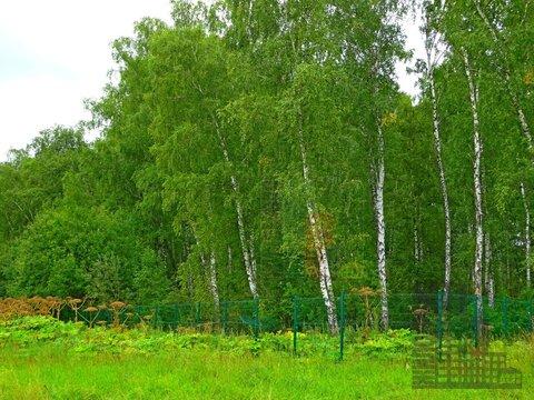 Земельный участок 20 соток в кп Бариново-парк - Фото 3