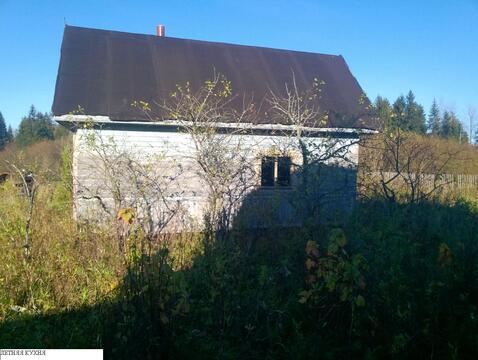 Участок с домом у реки и леса в п. Новолисино, ИЖС - Фото 4