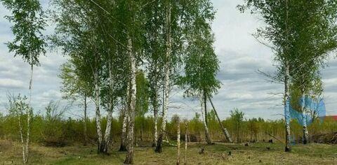 Продажа участка, Тюмень, Ул. Сосновая - Фото 3