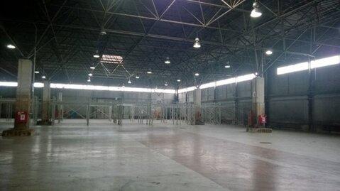 Сдам складское помещение 5997 кв.м, м. Купчино - Фото 1