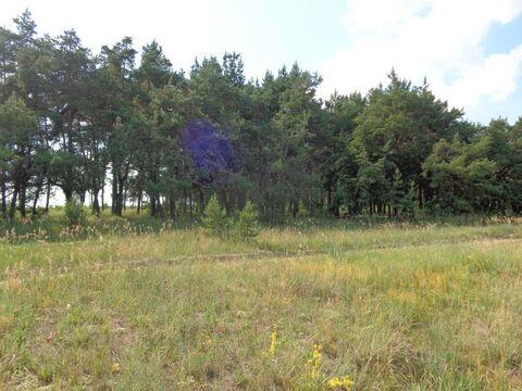 Продается Земельный участок ул. Толмачева - Фото 2