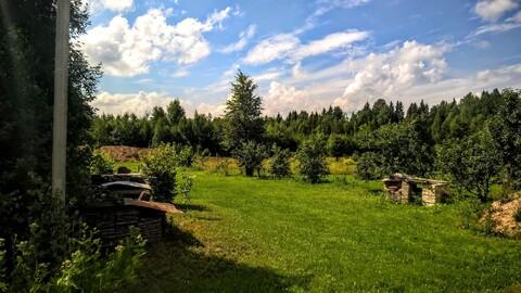 Участок 25 соток у самого соснового леса под Псковом - Фото 4
