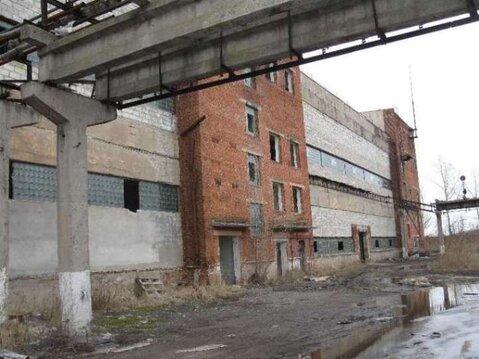 Продажа производственного помещения, Шебекино, Ул. Матроса Шарапова - Фото 2