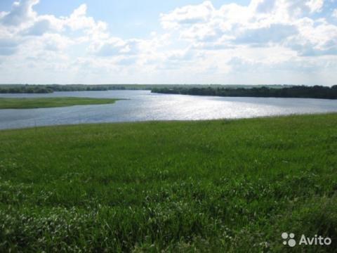 Квадратный участок вблизи Пронского водохранилища - Фото 1