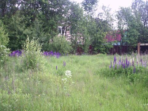 Потрясный участок рядом с Обнинском. - Фото 3