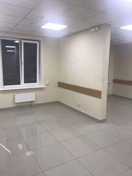 Аренда псн, Брянск, Брянск - Фото 3