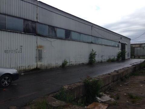 Сдам производственное помещение 700 кв.м, м. Рыбацкое - Фото 1