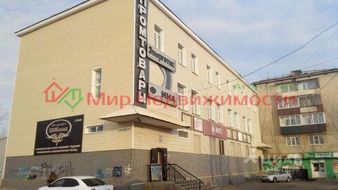 Продажа псн, Чита, Улица Энтузиастов - Фото 1