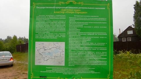 Новгородская область, Любытинский район, д.Домовичи, 10 сот. ЛПХ - Фото 3