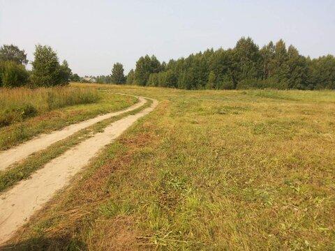 Продам: земля 520 соток, деревня Ростовка - Фото 1