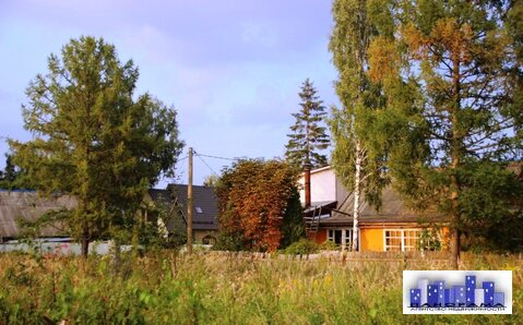 12,5 соток ЛПХ в Шишовке - Фото 3