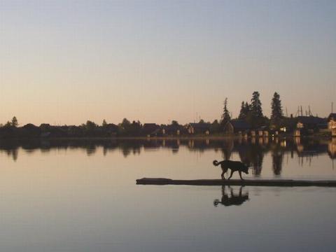 Дом на берегу озера Сямозеро, Карелия - Фото 1