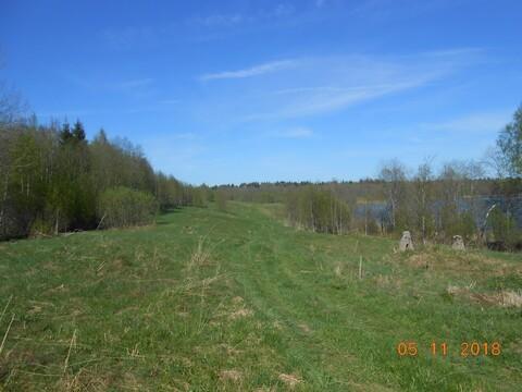 Купить земельный участок в Валдайском районев деревне Ивантеево - Фото 3