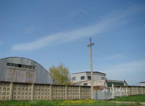 Продажа производственного помещения, Новоусманский район - Фото 1