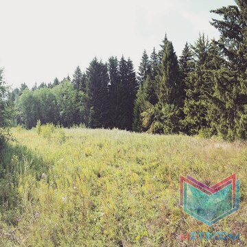 Земельный участок д. Гари (за Лобаново) - Фото 2