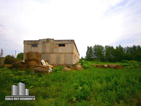 Продажа/Аренда складского/сельскохозяйственного помещения - Фото 1