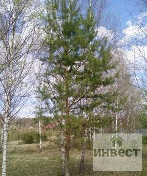 Продается земельный участок 9 соток, д.Купелицы, СНТ Купелицы - Фото 1
