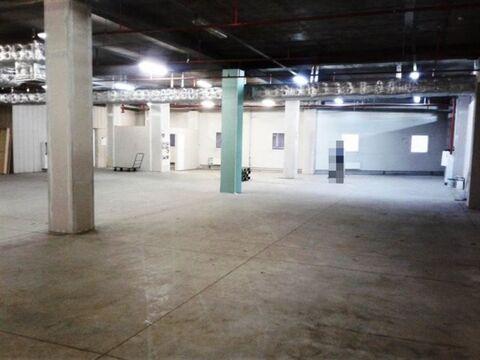 Сдам складское помещение 573 кв.м, м. Лесная - Фото 1
