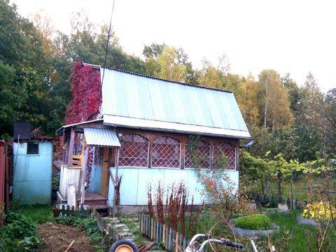 Дом Вятичи 65 а - Фото 1