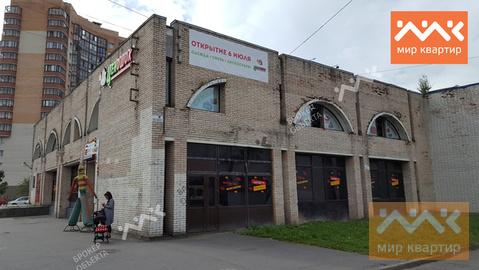 Сдается коммерческое помещение, Купчинская - Фото 4