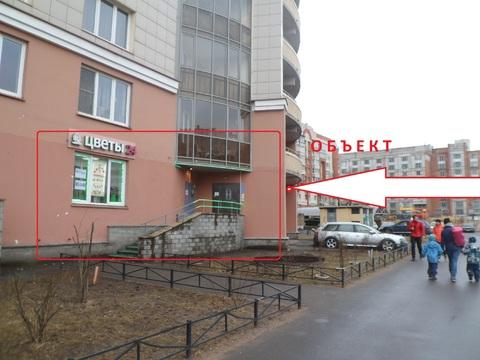 Сдам под магазин, услуги 123 кв. м, м. Гражданский пр. - Фото 1