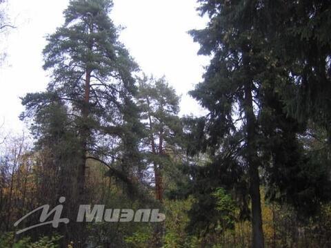 Продажа участка, Правдинский, Пушкинский район - Фото 1